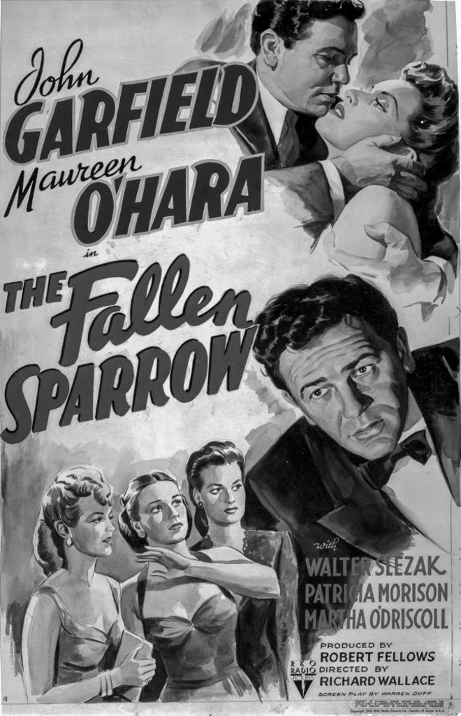 A Poster Of the Fallen Sparrow Photo Print