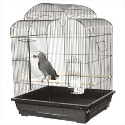 a-e-cage-ae29626-black-25-x-21-in-victorian-cage-ovygnqqul3wiyhpk