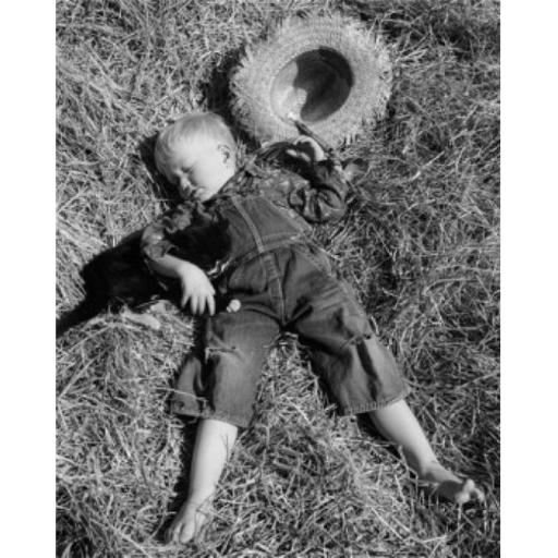 Posterazzi SAL2556811 Boy Sleeping with Cat on Hay Poster Print - 18 x 24 in.