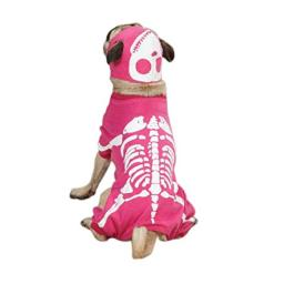"""Casual Canine Glow Bones Costume for Dogs, 12"""" Small, Pink"""