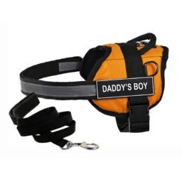 "Dean & Tyler's DT Works Orange ""DADDY'S BOY"" Harness with Chest Padding, Small, and Black 6 ft Padded Puppy Leash."