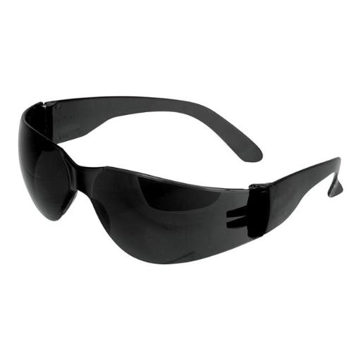 W1037 Tinted Safety Glasses