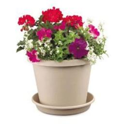 akro-mils-classic-flower-pot-clay-6-inch-pack-of-24-12006cl-e9037115e6aa43ae