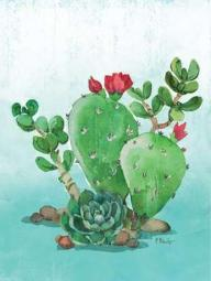 Cactus IV Poster Print by Paul Brent PDXBNT1281SMALL
