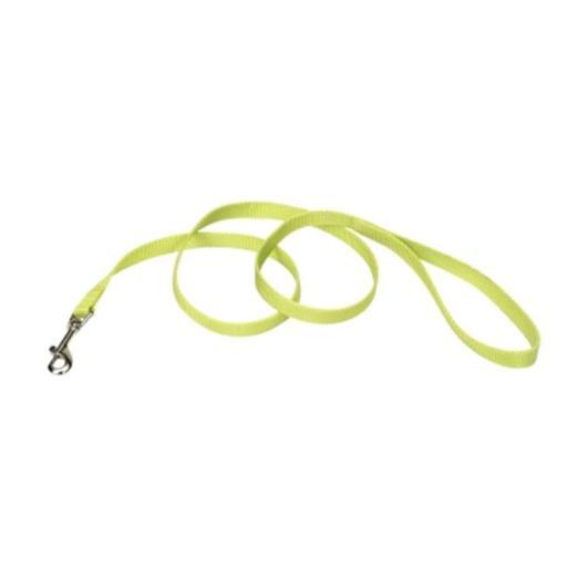 Animal Supply Company CO04064 6 ft. Pet Nylon Leash - Lime