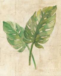 Monstera Leaves Neutral Crop Poster Print by  Albena Hristova PDX24274LARGE