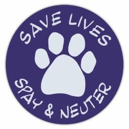 Save Lives Spay And Neuter Magnet Dog 4.75