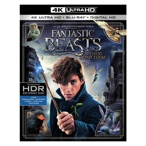 Fantastic beasts & where to find them (blu-ray/4k-uhd/2 disc) B63A5IBEVLLITMVA