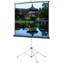 """Carpeted Picture King Matte White Portable Projection Screen Viewing Area: 60"""" H x 60"""" W"""
