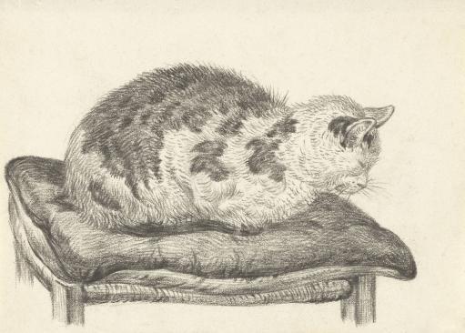 Cat Lying On A Cushion, Facing Left, By Jean Bernard, 1828, Dutch Chalk Drawing. Poster Print
