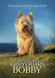 Adventures of greyfriars bobby (dvd/ws) D7785D