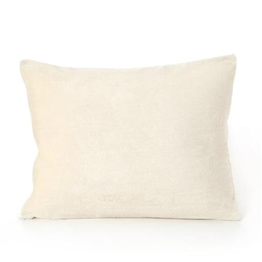 My First Mattress PL-MFPYOW-06 Memory Foam Youth Pillow with Free Pillow Case, Cream