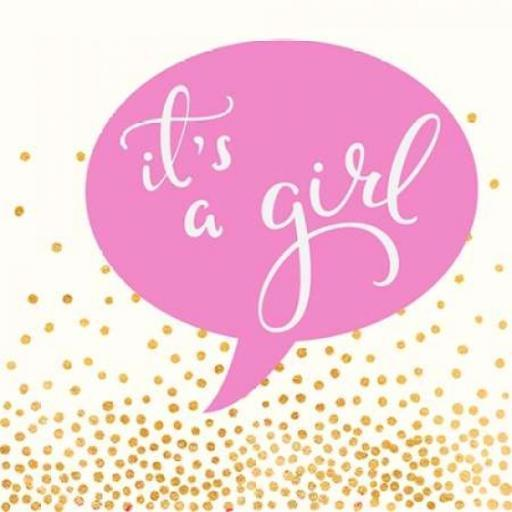 It's A Girl Poster Print by Evangeline Taylor 942092