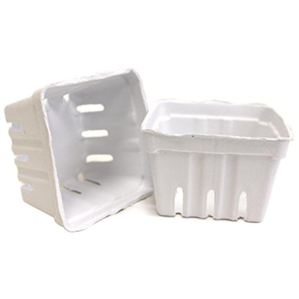 Berry Basket 10/Pkg-White
