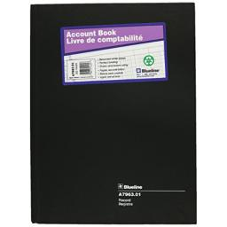 Blueline Record Book, Black, 10.25 x 7.69 inches, 300 Pages (A7963.01)