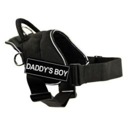 DT Fun Harness, Daddy's Boy, Black with Reflective Trim, Small - Fits Girth Size: 22-Inch to 27-Inch