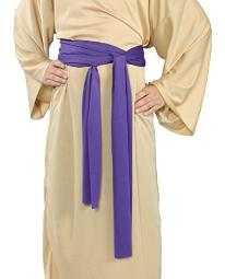 Alexanders Costumes Story of Christ Biblical Sash Child Purple One Size
