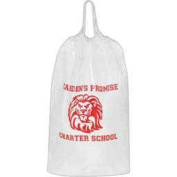 aab-12cc12164-plastic-bag-with-cotton-cord-drawstring-handle-and-4-in-gusset-pack-of-250-b81fa3548361fe01