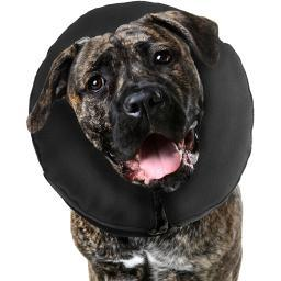 Zenpet Inflatable Recovery Collar-Extra Extra Large