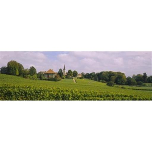 Panoramic Images PPI32101L WIne country with buildings in the background Village near Geneva Switzerland Poster Print by Panoramic Images - 36 x 12