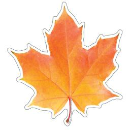 Eureka photo leaf paper cut-outs 841222