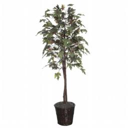 Vickerman TEC1760 6 ft. Frosted Maple tree