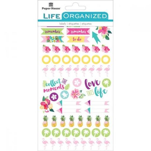 Paper House STPL-4E Life Organized Planner Stickers - Embrace Today