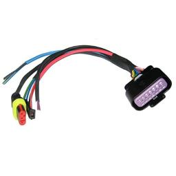 Vdo input harness to master supports can & two analog