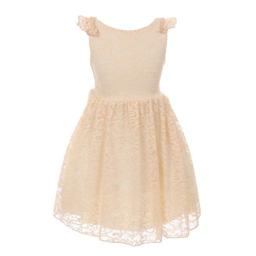 Big Girls Champagne Floral Pattern Lace Easter Junior Bridesmaid Dress 8-14