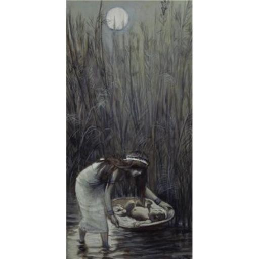 Posterazzi SAL99977 Moses Laid Amid the Flags James Tissot 1836-1902 French Jewish Museum New York City Poster Print - 18 x 24 in.