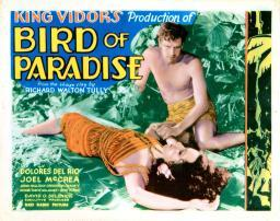 Bird Of Paradise Movie Poster Masterprint EVCMCDBIOFEC028LARGE