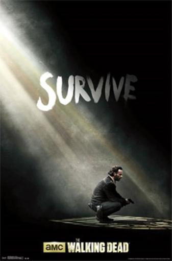 Walking Dead - Survive Poster Print
