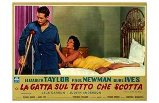 Cat on a Hot Tin Roof Movie Poster (17 x 11)