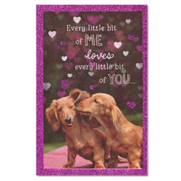 American Greetings Dachshunds Birthday Card with Glitter