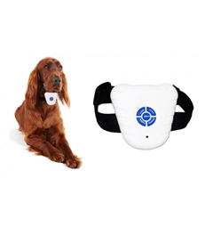 Puppy Dog Stop Bark Collar Dog's Barking  Gentle Correction From This Collar