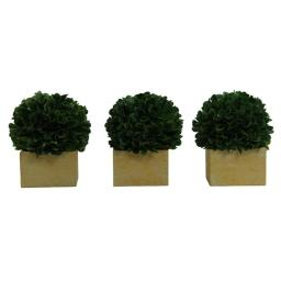 admired-by-nature-abn5p008-grn-3-5-5-in-faux-preserved-artificial-boxwood-ball-topiary-plant-tabletop-in-pot-set-of-3-fnstpidn8p5ymr87