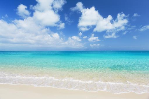 Tropical White Sand Beach and Sea In the Turks and Caicos Islands Poster Print (8 x 10)