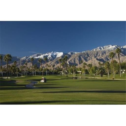 Palm trees in a golf course Desert Princess Country Club Palm Springs Riverside County California USA Poster Print by - 24 x 16
