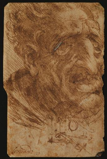 Head Of An Old Man And Sketches Of A Mechanical Device Poster Print YM8B3WXO9T7BHY0O