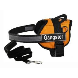 """Dean & Tyler's DT Works Orange """"GANGSTER"""" Harness with , XX-Small, and Black 6 ft Padded Puppy Leash."""