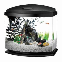 Aqueon 100528786 black aqueon minibow led aquarium kit 1 gallon black 8.5 x 6.25 x 9.25