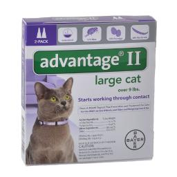 advantage-purple-20-2-advantage-flea-control-for-cats-and-kittens-over-9-lbs-2-month-supply-06jkvk3iky2ankoh