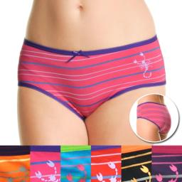 Women's Stripe Hiphugger Panties