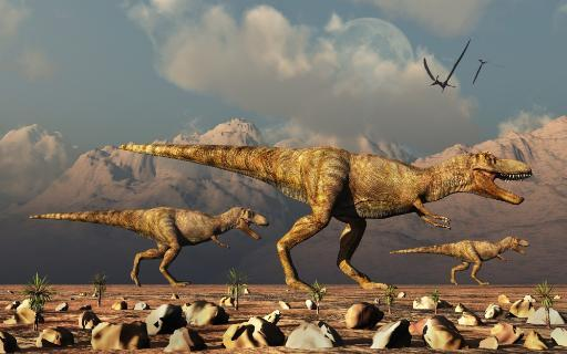 A pack of Tyrannosaurus rex dinosaurs hunting for food. Poster Print by Mark Stevenson/Stocktrek Images YDLEWHYVI4SOV2GJ