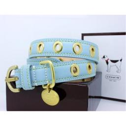 """COACH Gold Grommet Turquoise Leather Collar with Engraveable Charm 60112 Limited Edition - Gold/Turquoise, X-Large (22""""-26"""")"""