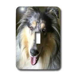 "3dRose lsp_4154_1""Rough Collie"" Single Toggle Switch"