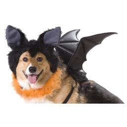 California Costumes Bat Dog Costumes, Pet, Black, Extra Small