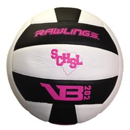 Rawlings VB202 SCHSL Volleyball