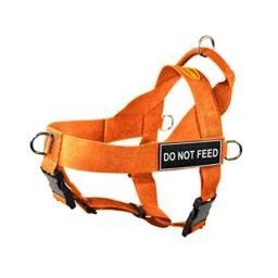 Dean & Tyler DT Universal No Pull Dog Harness with Do Not Feed Patches, Orange, X-Small
