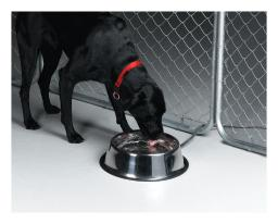 API Silver Stainless Steel 160 oz. Heated Pet Bowl For Dog - Case Of: 1;